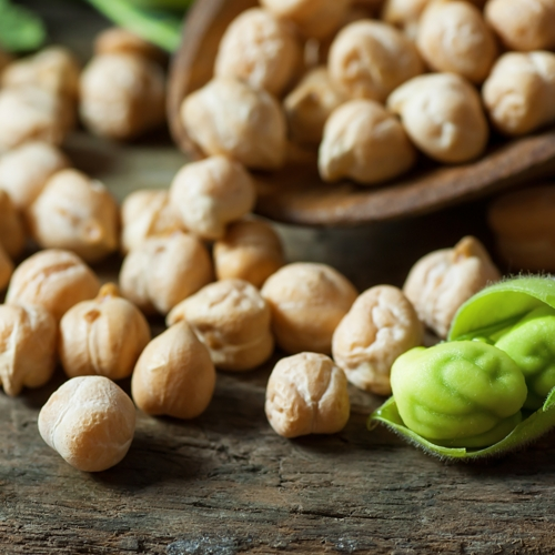 plant-based proteins chickpea